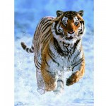 Ravensburger-14475 Jigsaw Puzzle - 500 Pieces - Tiger in the Snow