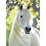 Puzzle  Ravensburger-14726 White Horse