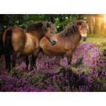Puzzle  Ravensburger-14813 Ponies in the Flowers