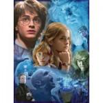 Puzzle  Ravensburger-14821 Harry Potter in Hogwarts (TM)