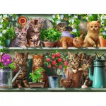 Puzzle  Ravensburger-14824 Cats on the Shelf
