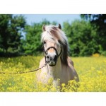 Puzzle  Ravensburger-15038 Horse in the Field of Flowers