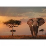 Puzzle  Ravensburger-15159 Nature Edition No 13 - Elefant in Masai Mara Nationalpark
