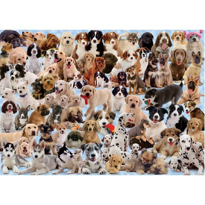 Ravensburger-15633 Jigsaw Puzzle - 1000 Pieces - Dogs's Gallery