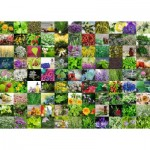 Puzzle  Ravensburger-15991 99 Herbs and Spices