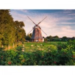 Puzzle  Ravensburger-16223 Windmill on the Baltic Sea
