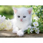 Puzzle  Ravensburger-16243 White kitten