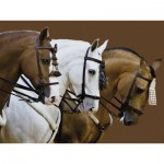 Puzzle  Ravensburger-16339 Horses