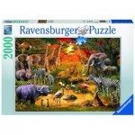 Puzzle  Ravensburger-16702 Gathering at the Waterhole