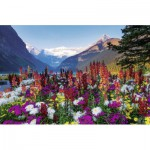 Puzzle  Ravensburger-17061 Flowered mountains