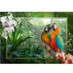 Ravensburger-19188 Jigsaw Puzzle - 1000 Pieces - Parrots