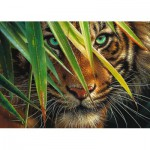 Puzzle  Ravensburger-19486 Mysterious Tiger