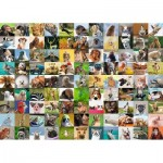 Puzzle  Ravensburger-19642 99 Funny Animals