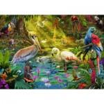 Puzzle  Ravensburger-19673 Bird Paradise