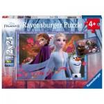 2 Puzzles - Frozen II