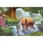 Puzzle  Schmidt-Spiele-56161 Horses