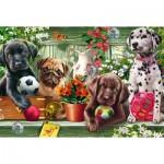 Puzzle  Schmidt-Spiele-56198 Playful Dog