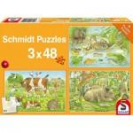 Schmidt-Spiele-56222 3 Jigsaw Puzzles - Animal Families