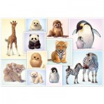 Puzzle  Schmidt-Spiele-56270 Babies Animals of the wilderness