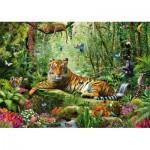 Puzzle  Schmidt-Spiele-58188 Tigres in the jungle