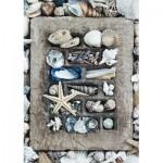 Puzzle  Schmidt-Spiele-58298 Treasures of the Sea