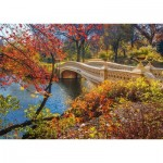 Puzzle  Schmidt-Spiele-58305 Central Park, New York