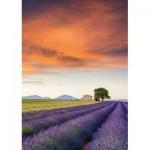 Puzzle  Schmidt-Spiele-58364 Lavender Field, Provence