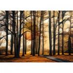 Puzzle  Schmidt-Spiele-58396 Magic Forest