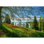 Puzzle  Schmidt-Spiele-58967 Tulips Field - Mainau Island