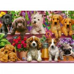 Puzzle  Schmidt-Spiele-58973 Dogs on a Shelf