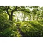Puzzle  Schmidt-Spiele-59382 Stefan Hefele - The Enchanted Path