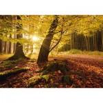 Puzzle  Schmidt-Spiele-59384 Stefan Hefele - Autumn Magic