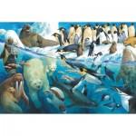 Puzzle   Animals at the Polar Circle