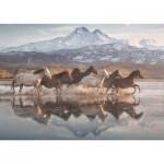 Puzzle   Horses in Cappadocia