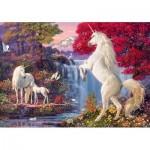 Puzzle   Triumph of the Unicorns