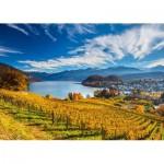 Puzzle   Vineyards