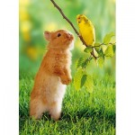 Puzzle  Step-Puzzle-77010-02 Rabbit and Parakeet