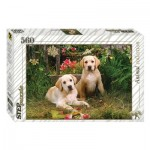 Puzzle  Step-Puzzle-78076 Labrador Puppies