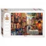 Puzzle   Dominic Davison: Venice