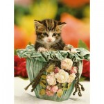 Puzzle   Kitten in a Pot