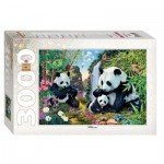 Puzzle   Pandas