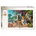 Puzzle   Tigers