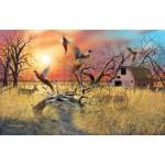 Puzzle  Sunsout-17930 Mark S Anderson - Pheasant Flight