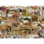 Puzzle  Sunsout-27256 XXL Pieces - Barbara Behr - On the Farm