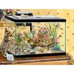 Puzzle  Sunsout-35049 XXL Pieces - Fish Tank