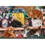 Puzzle  Sunsout-42920 Image World - Playful Kittens