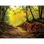 Puzzle  Sunsout-48851 Chris Cummings - Still Water Setting