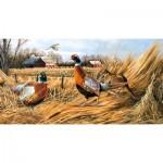 Puzzle  Sunsout-49061 Robert Schmidt - Pheasant Farm