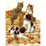 Puzzle  Sunsout-51404 Sarah Adams - Box of Apples