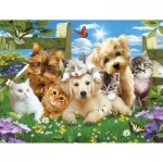 Puzzle  Sunsout-54923 XXL Pieces - Pups n Kittens